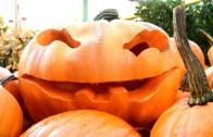 Halloween på Liseberg (Pressvisning 2015-10-22)