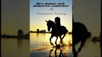 Fan fiction från Krisztinas version av Sleepy Hollow: Mrs Baker och domaren samtalar
